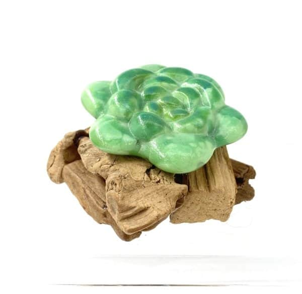 """3"""" diameter bright green glass succulent with rounded leaves and darker green accents mounted on a small pile of driftwood"""