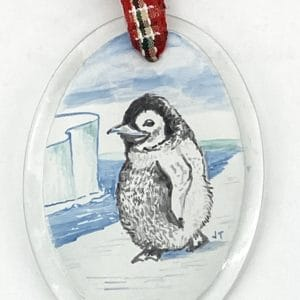 penguin on ice floe